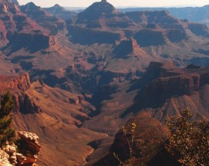 One of so many amazing views of the Grand Canyon